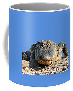 Coffee Mug featuring the photograph Alligator Approach .png by Al Powell Photography USA