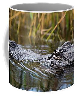 Alligator Closeup-2-0600 Coffee Mug
