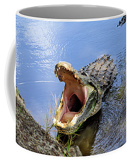 Alligator Growl Coffee Mug by Rosalie Scanlon