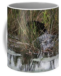Alligator Lurks-0620 Coffee Mug