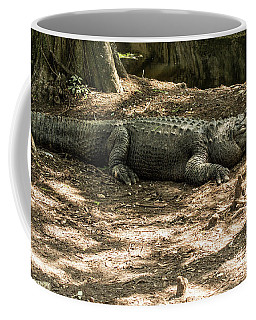 Alligator Lowry Park Zoo 2 Coffee Mug