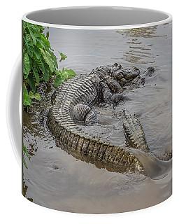 Alligators Courting Coffee Mug