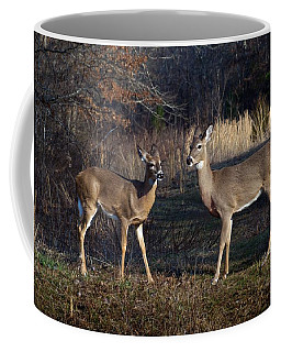 Almost Spring Coffee Mug by Bill Stephens