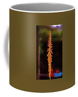 Aloe Blossoms Coffee Mug by Craig Wood