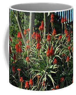Aloe Choir Coffee Mug
