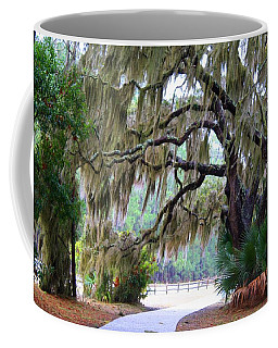 Coffee Mug featuring the photograph Along The Path by Kathryn Meyer