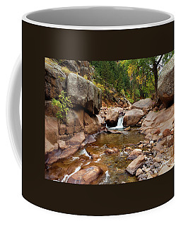 Along The St. Vrain Coffee Mug
