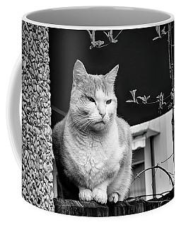 Aloof Coffee Mug