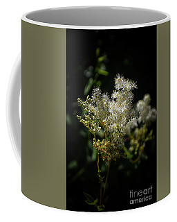 Coffee Mug featuring the photograph Alp Flowers by Michelle Meenawong