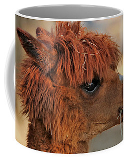 Alpaca Portrait Coffee Mug