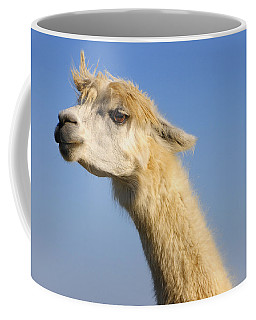 Coffee Mug featuring the photograph Alpaca by Skip Hunt