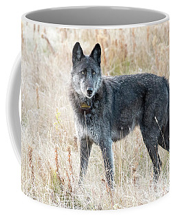 Alpha Female Coffee Mug