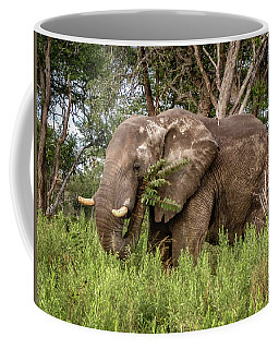 Alpha Male Elephant Coffee Mug
