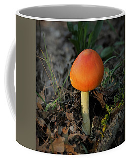 Coffee Mug featuring the photograph Amanita Arrival by Sheila Brown