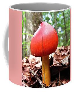 Amanita Jacksonii  Coffee Mug