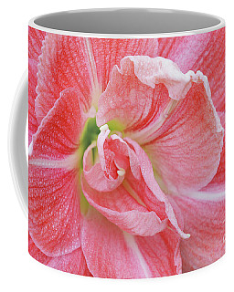 Amaryllis Facing Right Coffee Mug