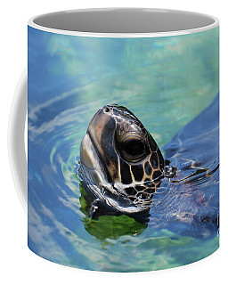 Amazing Close Up Of A Sea Turtle Swimming Coffee Mug by DejaVu Designs