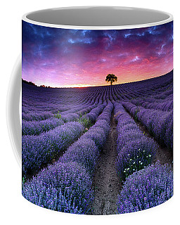 Amazing Lavender Field With A Tree Coffee Mug
