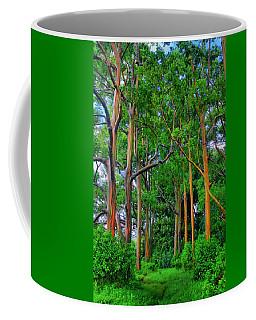 Amazing Rainbow Eucalyptus Coffee Mug