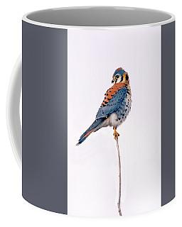 Amercian Kestrel Coffee Mug
