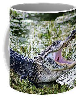 American Alligator Florida 3314_2 Coffee Mug