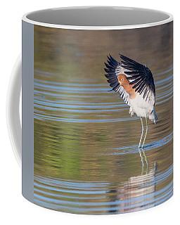 American Avocet 1878-031418-1cr Coffee Mug