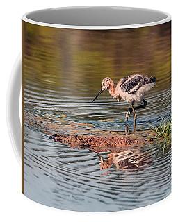 American Avocet Chick Coffee Mug by Tam Ryan
