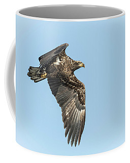 Coffee Mug featuring the photograph American Bald Eagle 2017-17 by Thomas Young