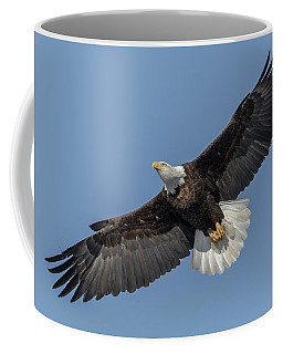 Coffee Mug featuring the photograph American Bald Eagle 2017-18 by Thomas Young