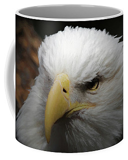 American Bald Eagle Portrait 3 Coffee Mug by Ernie Echols