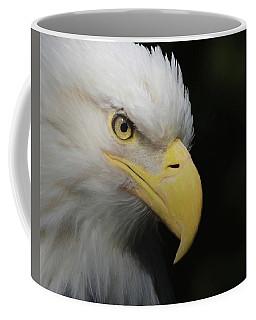 American Bald Eagle Portrait 4 Coffee Mug