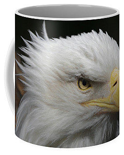 American Bald Eagle Portrait Coffee Mug by Ernie Echols