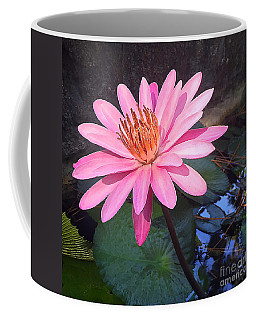 Coffee Mug featuring the photograph Full Bloom by LeeAnn Kendall