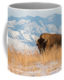 American Bison In Front Of The Rocky Mountains Coffee Mug