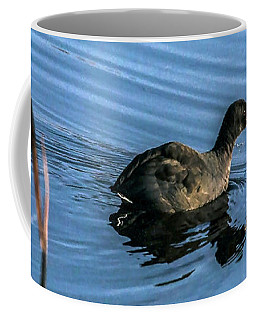 American Coot In Marsh Coffee Mug