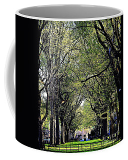 American Elms On The Central Park Mall Coffee Mug