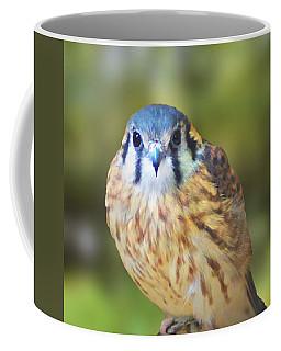 Coffee Mug featuring the digital art American Kestrel by Kathy Kelly