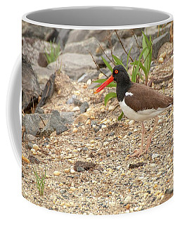 American Oystercatcher Coffee Mug
