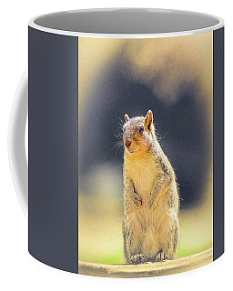 American Red Squirrel Coffee Mug