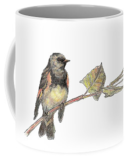 American Redstart Coffee Mug