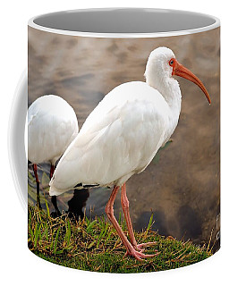 American White Ibis Coffee Mug by Elaine Manley