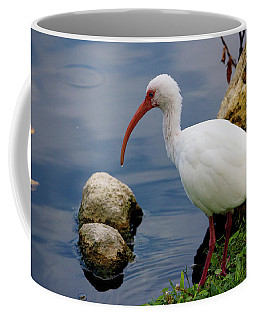 American White Ibis Coffee Mug