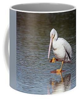 American White Pelican 3318-032918-1cr Coffee Mug
