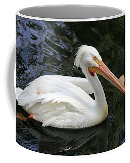 American White Pelican, Florida Coffee Mug