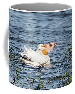 American White Pelican Male Coffee Mug