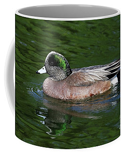 American Wigeon Anas Americana Duck Coffee Mug