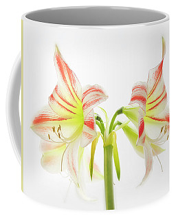 Amorice Coffee Mug
