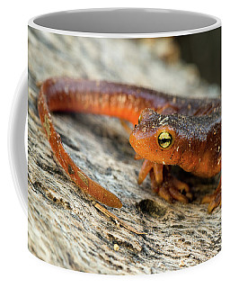 Amphibious Coffee Mug