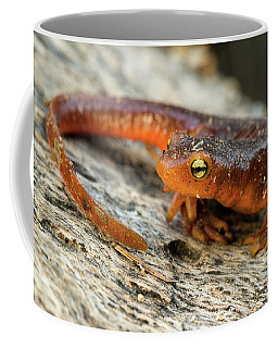 Amphibious Coffee Mug by Scott Warner