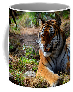 Coffee Mug featuring the mixed media Amur Tiger 5 by Angelina Vick